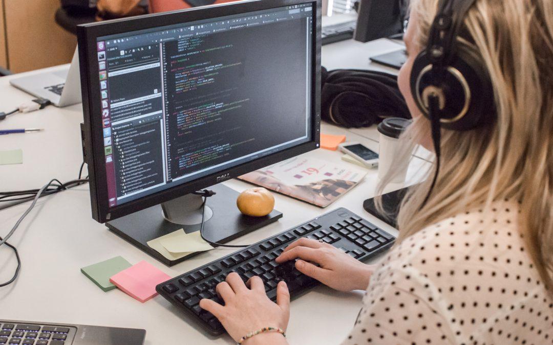 Programutvecklare .NET med SharePoint-inriktning