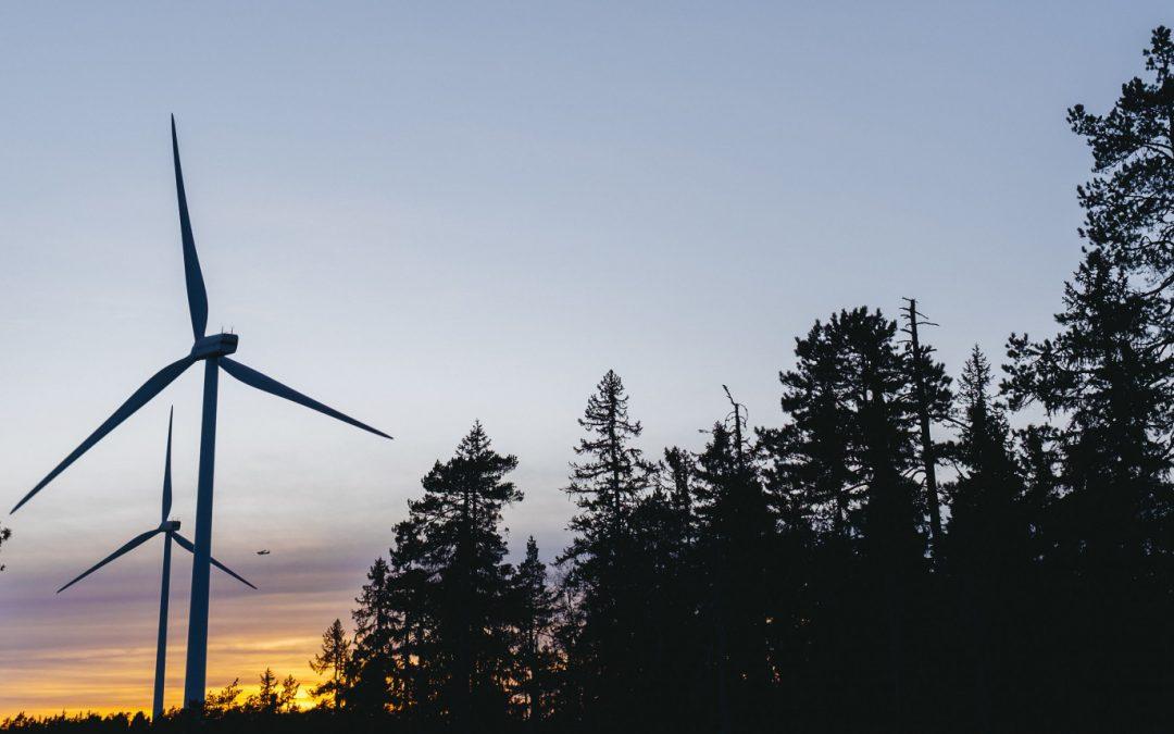 Miljöcertifiering och hållbarhet